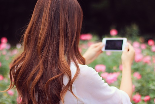 花の写真を撮る