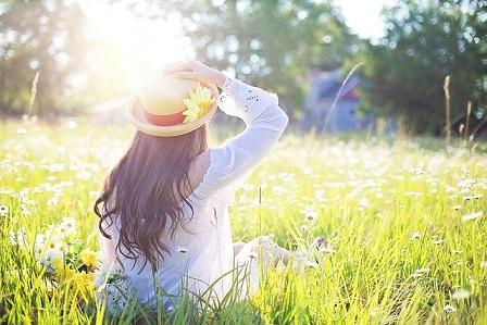 陽光に照らされる草原