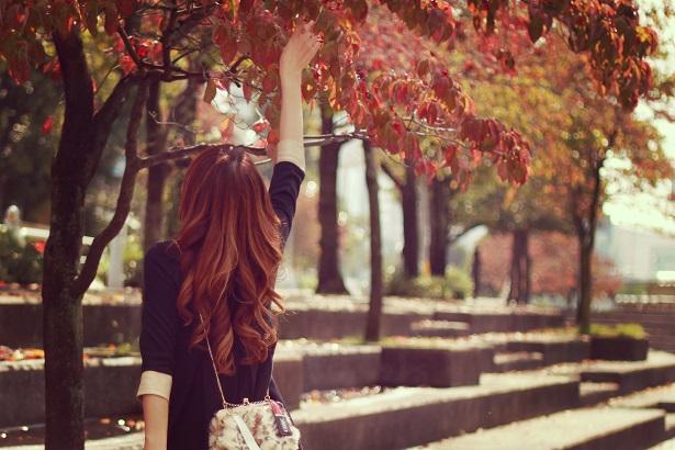 """小さい秋を見つけた"""""""