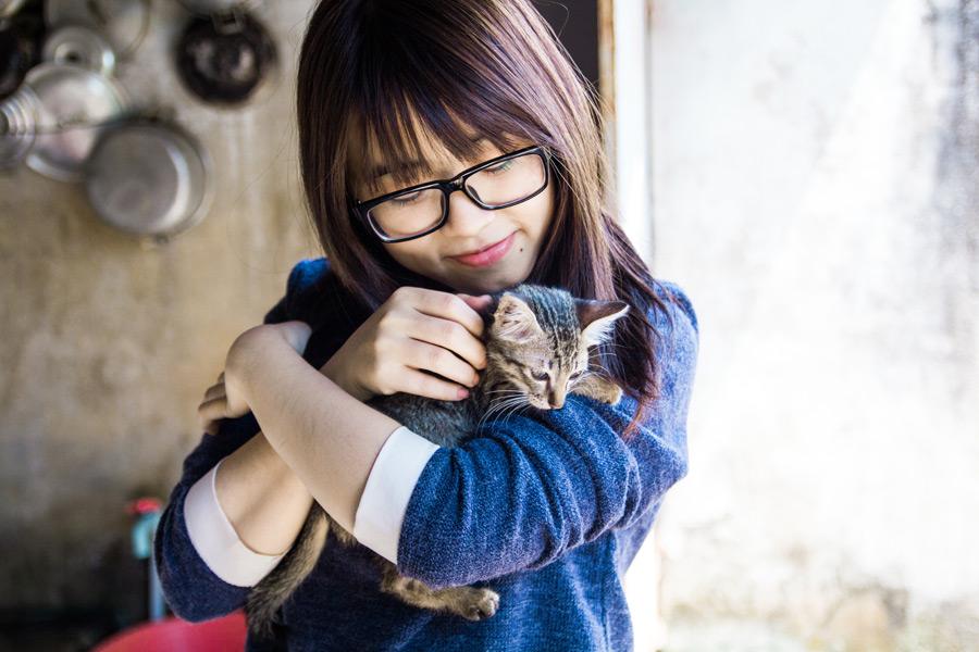 猫を撫でる女の子