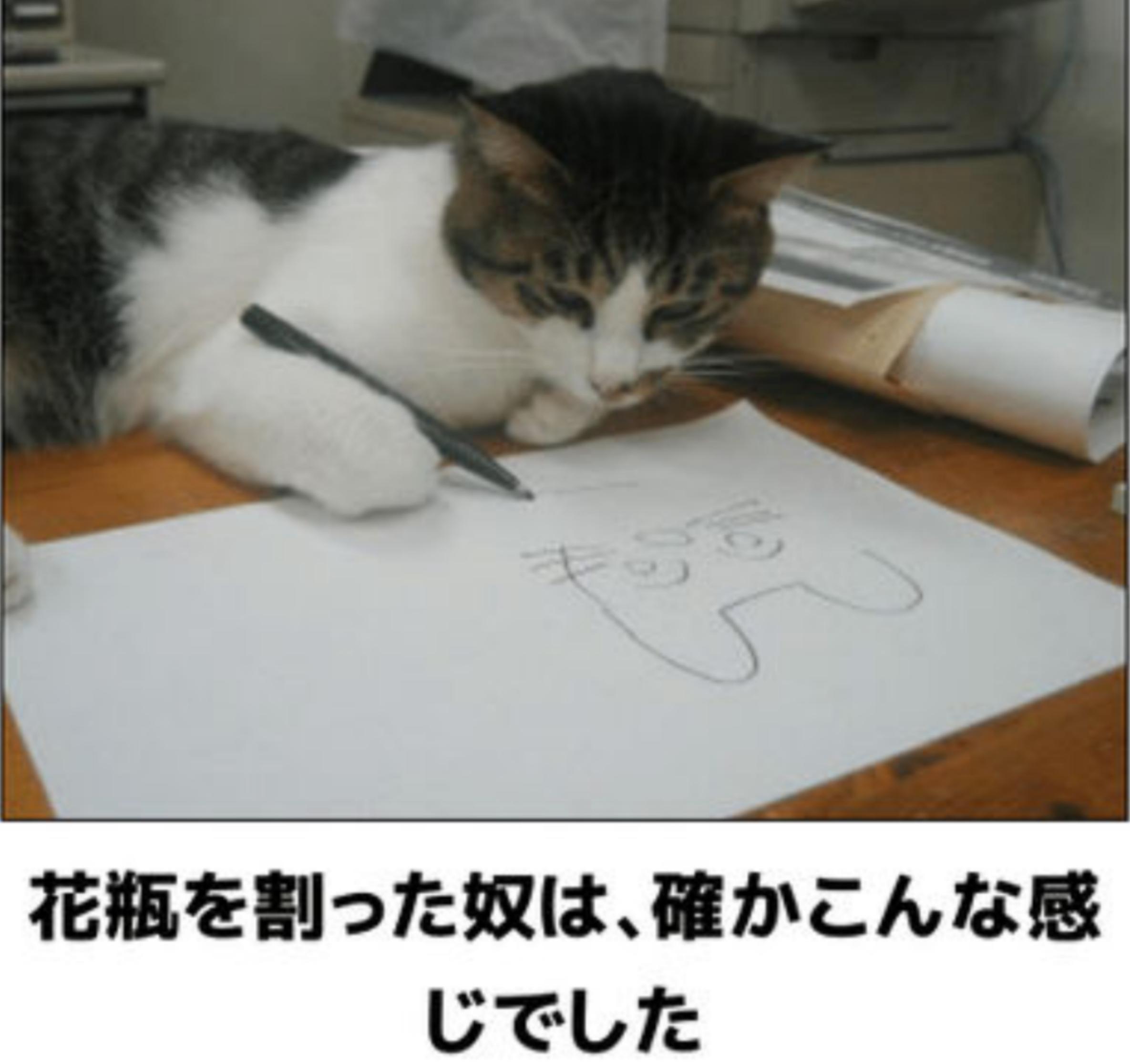☆☆☆☆(^-^)v