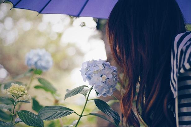 傘とお花と女の子
